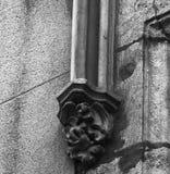 Пряча дракон среди листьев Стоковое Изображение