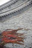 Псевдо-классическая архитектура в городке воды Gubei стоковое фото