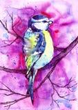 Птица акварели сидя на ветви Стоковое Изображение
