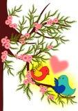Птица валентинки Стоковые Фотографии RF