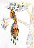 Птица жары на ветви дерева Рисовать с покрашенными карандашами стоковое фото