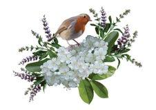 Птица и цветки Стоковые Фотографии RF