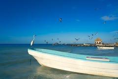 Птица и шлюпка цапли острова Holbox в пляже Стоковые Изображения