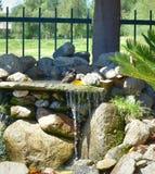 Птица купая в фонтане ванны птицы заполнила с проточной водой Стоковая Фотография RF
