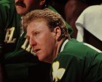 Птица Ларри, Celtics Бостона Стоковые Фотографии RF