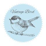 Птица на ветви при цветки покрашенные вручную винтажная карточка с птицей также вектор иллюстрации притяжки corel Стоковые Изображения