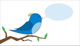 Птица на ветви с вектором пузыря речи Стоковое Изображение