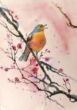Птица на ветви бесплатная иллюстрация