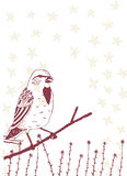 Птица на ветви Стоковые Фото