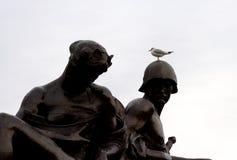 Птица на голове Стоковое Изображение RF