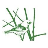 птица на нарисованной руке ветв-года сбора винограда Стоковая Фотография