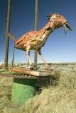 Птица обочины сделанная из металлолома вдоль трассы 54 в южном Неш-Мексико Стоковые Фото