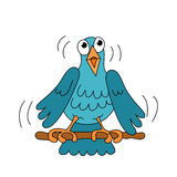 Птица петь маленькая смешная Стоковые Фото