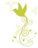 птица припевая Стоковое Изображение