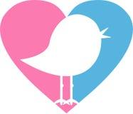 Птица сердца влюбленности Стоковое Фото
