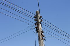 Птица силуэта между кабельной проводкой электричества Стоковое Изображение RF