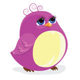 птица смешная Стоковая Фотография RF