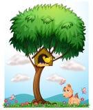 Птица, собака и бабочки Стоковая Фотография