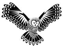 Птица сыча для дизайна талисмана или татуировки или идеи логотипа Стоковые Фотографии RF