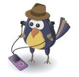 Птица с игроком Стоковое Изображение RF