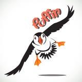 Птица тупика Стоковые Фото