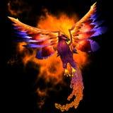 Птица Феникса Стоковое Изображение RF
