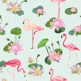 Птица фламинго и предпосылка цветков Waterlily безшовное картины ретро Стоковая Фотография