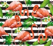 Птица фламинго и тропическая предпосылка цветков Стоковое Изображение RF