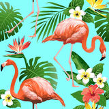 Птица фламинго и тропическая предпосылка цветков Стоковое Изображение