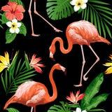 Птица фламинго и тропическая предпосылка цветков Стоковое Фото