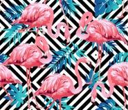 Птица фламинго и тропическая предпосылка цветков Стоковые Изображения RF