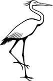 Птица цапли иллюстрация штока