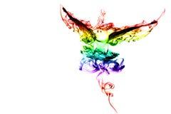 Птица цвета Стоковое фото RF