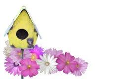 птица цветет лето дома стоковая фотография