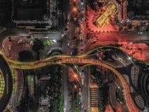 Птица центрального парка взгляда стоковые изображения rf