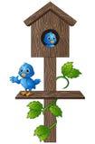 Птица шаржа голубая в деревянном почтовом ящике бесплатная иллюстрация