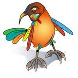 Птица шаржа стоковая фотография