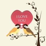 Птицы влюбленности Стоковые Фотографии RF