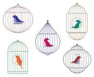 Птицы в клетках иллюстрация штока