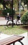 Птицы в парке DaAn Стоковые Фотографии RF