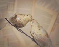 Птицы влюбленности с бумагой музыки Стоковое фото RF