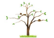 птицы гнездясь вал иллюстрация штока