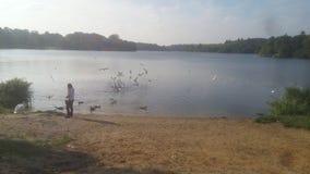 Птицы девушки моря Стоковая Фотография RF