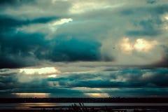 Птицы летают на юг Стоковое Изображение RF