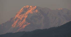 Птицы летают около высокой горы на восходе солнца сток-видео