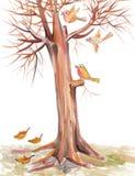Птицы летают среди ветвей Стоковая Фотография RF