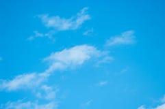 Птицы летая в голубое небо Стоковое Изображение