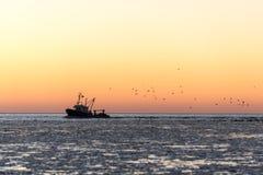 Птицы летая в заход солнца над замороженными морем и маломерным судном Стоковые Фотографии RF