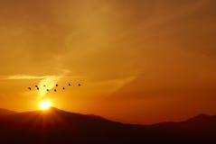 Птицы летая на восход солнца над горами Стоковое Изображение