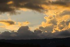 птицы летая на заход солнца для предпосылок Стоковое фото RF